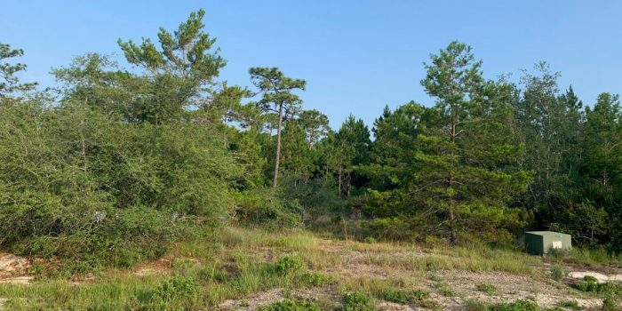 1 acre lot located in Magnolia Ridge subdivision