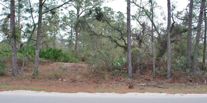 .40 acre bay view lot located in the Gulf Beaches