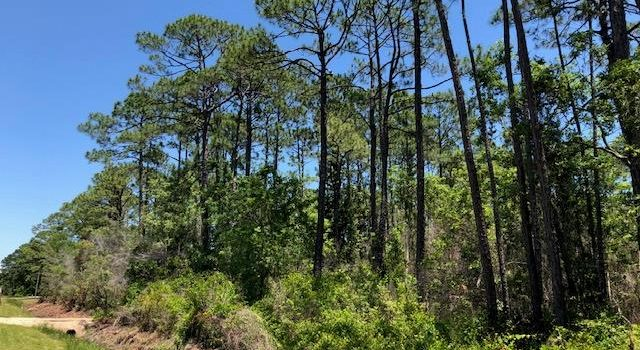 1 acre lot located in Tarpon Shores
