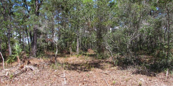 1 acre lot located in Lighthouse Estates