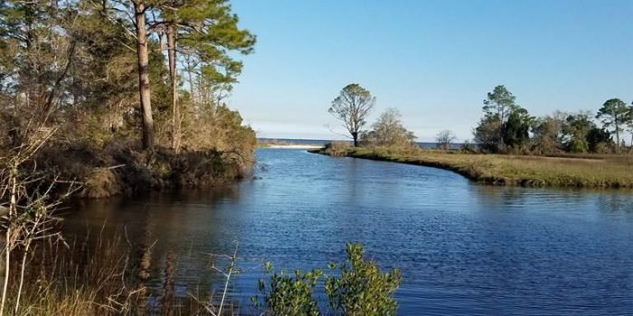 1.0 acre bayou/canal/creek lot located in Silent Waters