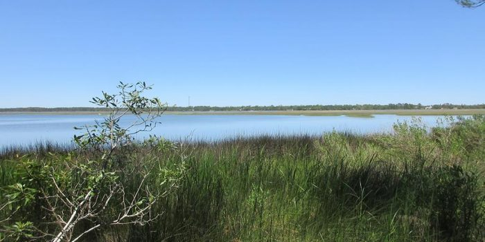 0.2740 Acre bay front in Alligator Harbor