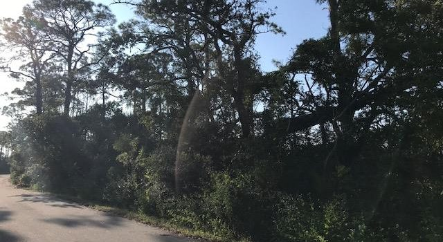 1 acre bay view lot located in Sandpiper Village in the St. George Plantation