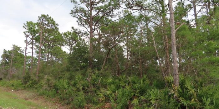 1 acre lot located in Eastpoint