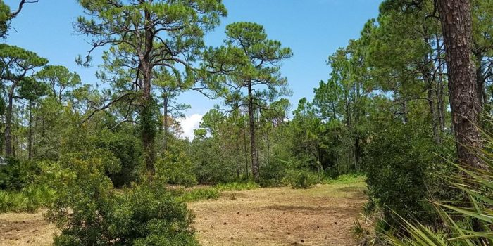 .33 acre bay view lot located in the Gulf Beaches