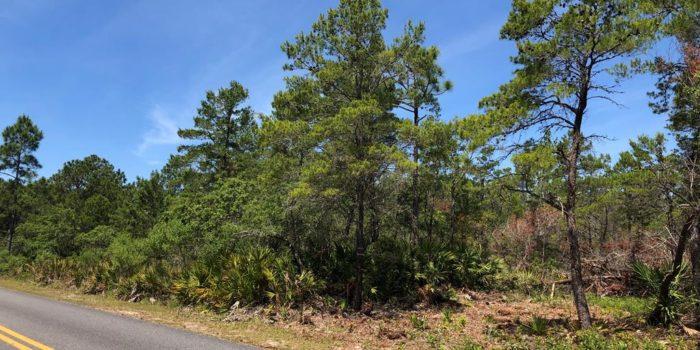 1 acre lot located near Carrabelle Beach