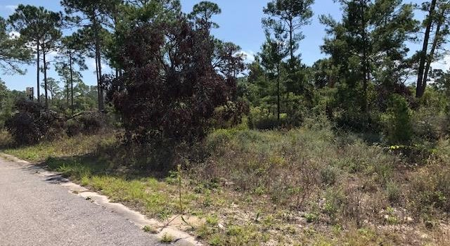 .21 acre lot in Carraway Bay Plantation