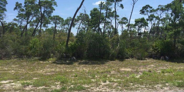 .35 acre lot located in Magnolia Ridge subdivision