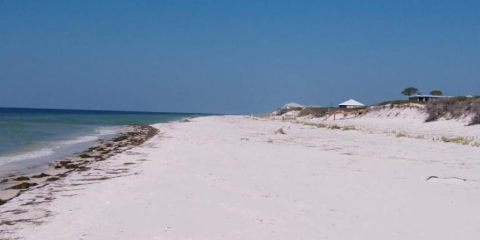 .66 acre gulf front lot located on Dog Island
